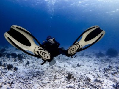 Discover Scuba Diving Experience Flippers Boracay Beach Guide