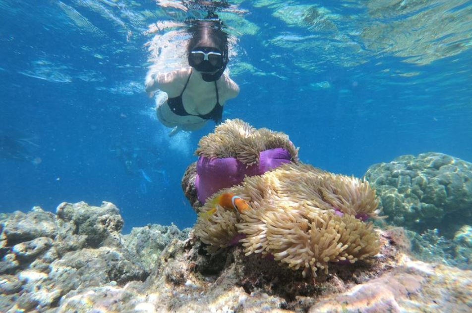 Private Island Hopping Boat Tour and Snorkelling Nemo Boracay Beach Guide